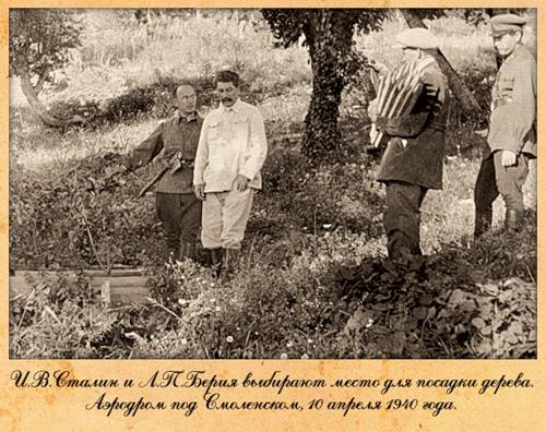 Сталин и Берия выбирают место для посадки деревьев