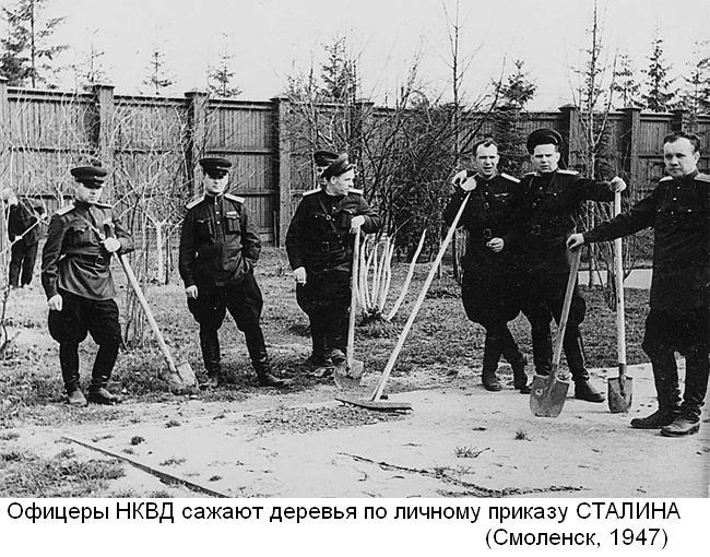 Офицеры сажают деревья по приказу Сталина